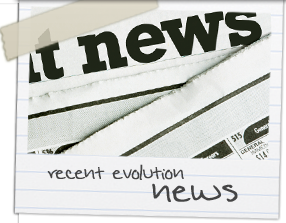Evolution Childrens Services News